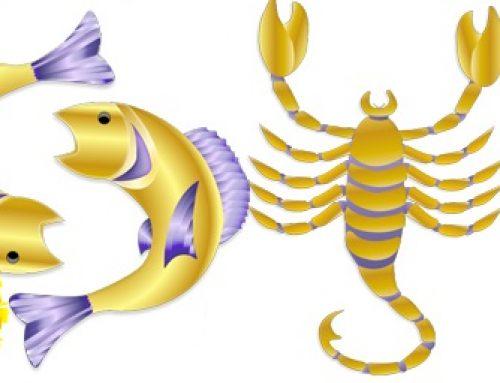 Pisces Sun Scorpio Rising