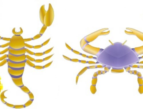 Scorpio Sun Cancer Rising