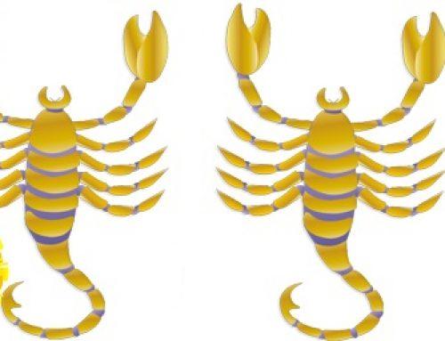 Scorpio Sun Scorpio Rising