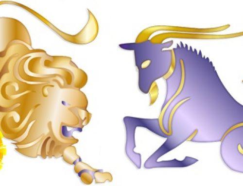 Leo Sun Capricorn Rising