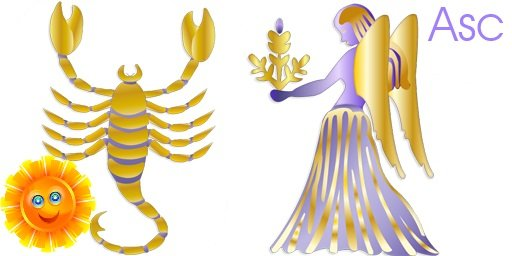 sun horoscopes virgo