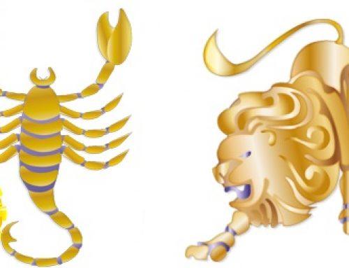 Scorpio Sun Leo Rising