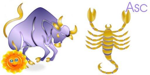 Taurus scorpio rising