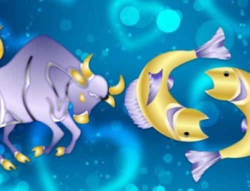 Taurus Pisces Compatibility