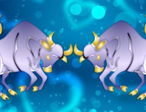 Taurus Taurus Compatibility