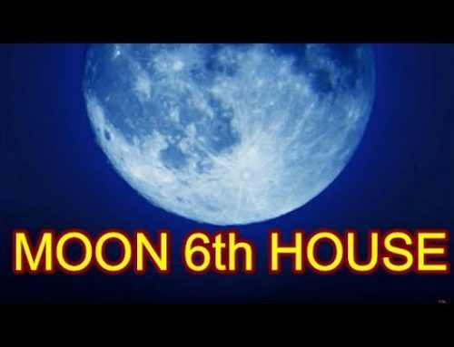 Horoscope Moon in 6th House
